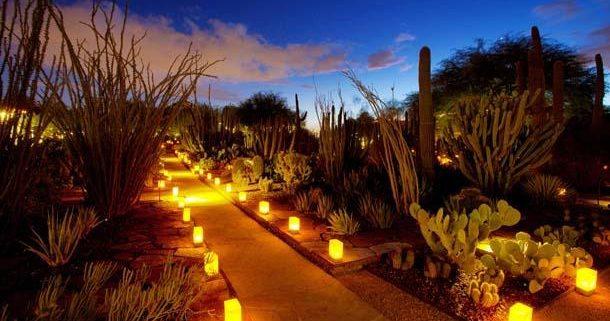 Liberty Wildlife At Desert Botanical Gardens