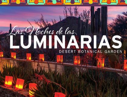Liberty Wildlife At Desert Botanical Gardens Luminarias Liberty